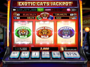 Success Achieved by Playing Slots